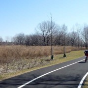 brand new greenway 真新しい緑道