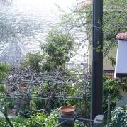 his neighbor's garden