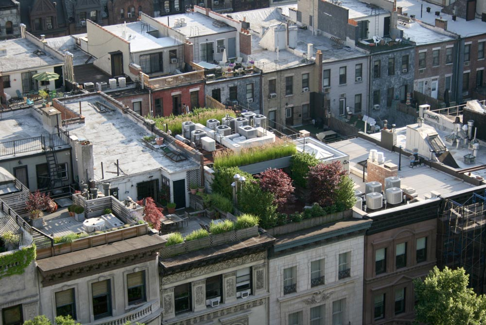 Most Of The Roof Gardens In New York Are Private. They May Be A Small  Contribution To The Overall Environment Of The City But They Help To Keep  It Clean, ...